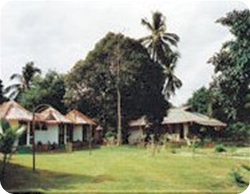 KokosNuss Bungalows